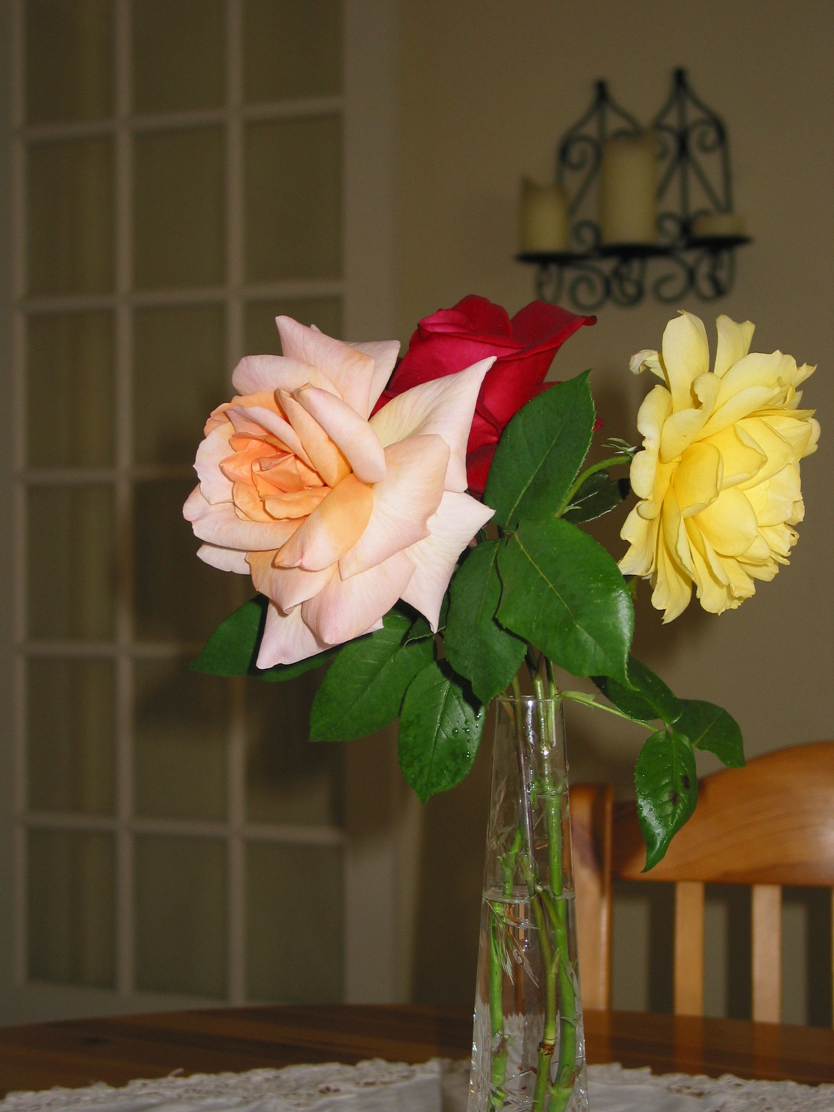 Roses for Vive le jardin 36250 saint maur